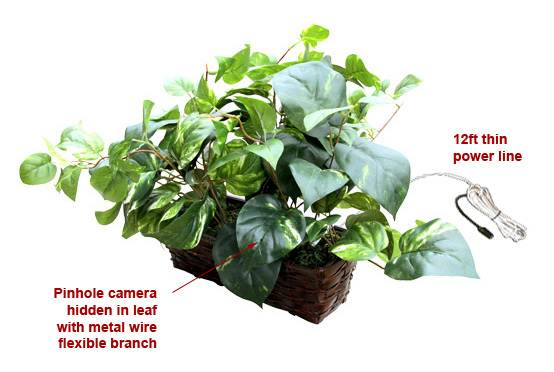 SPY SECRET HIDDEN FAKE MONEY PLANT CAMERA